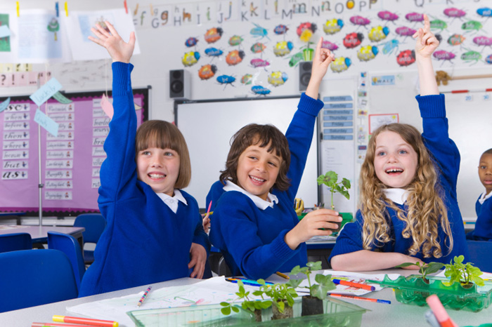 World experience: kindergarten and primary school in England