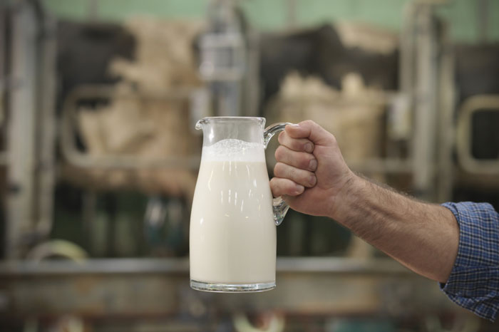 To drink or not to drink: why does a man need milk