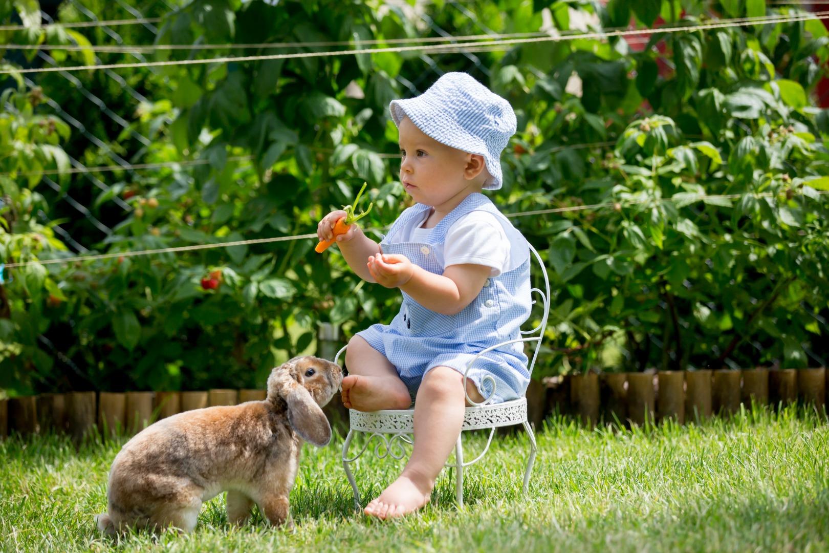 Здоровые перекусы для детей: 3 рецепта