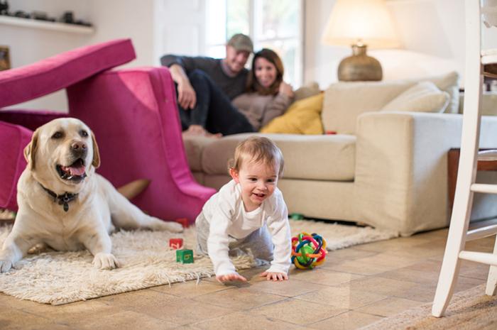 Предметы, окружающие ребенка