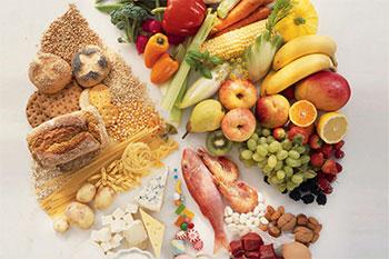 Незаменимые элементы питания