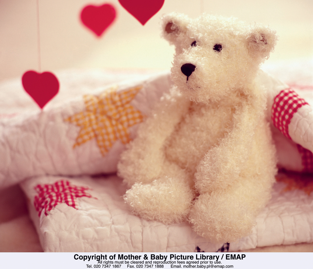 Happiness is my teddy