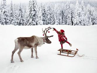 Фото №1 - Зимняя сказка