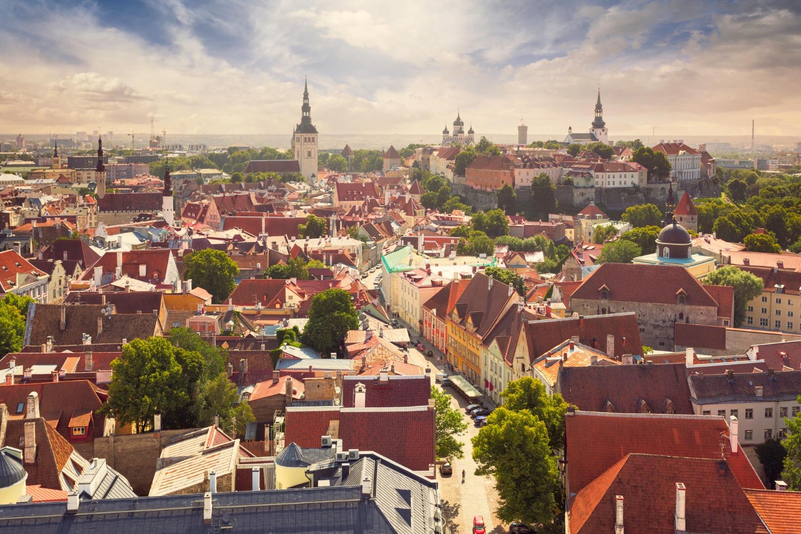 Летний Таллин: 9 мест, интересных для детей